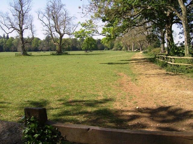 Parkland near Westonbirt