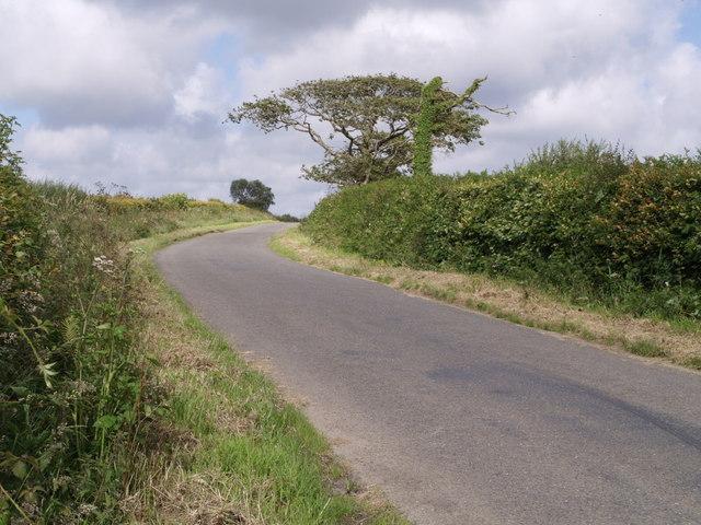 Lane near Ashwater