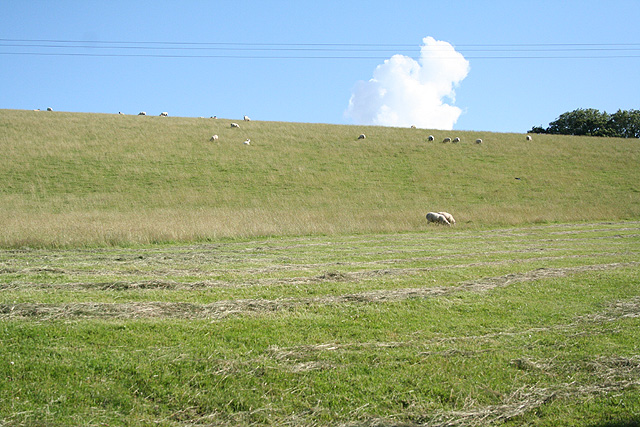 Yarnscombe: by Rooks Cross