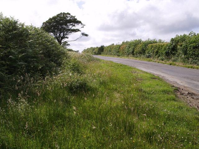 Mount Lane
