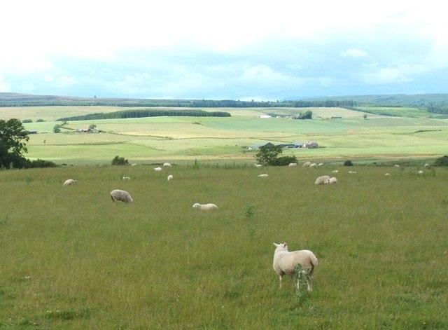 East of Woodside of Balhaldie