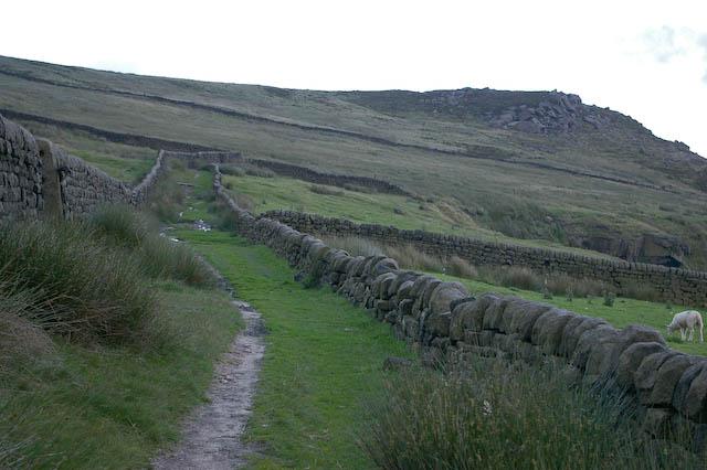 Bridleway between enclosed fields at Harley Wood Slack