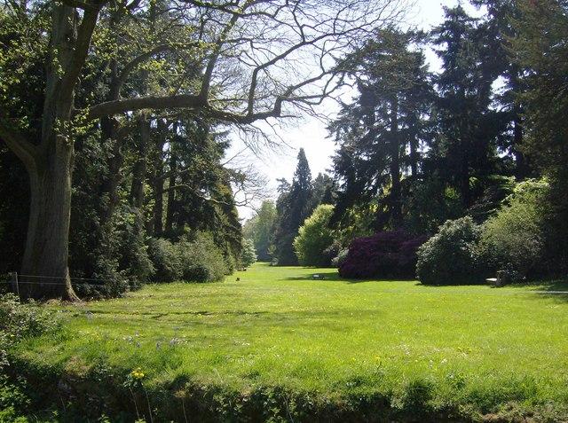 Sneak preview of Westonbirt arboretum