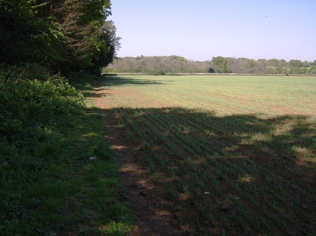 Footpath north of Westonbirt