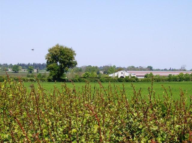 Vancelette's Barn Farm