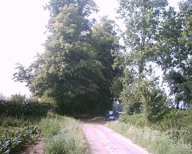 Spinney Lane, Livermere