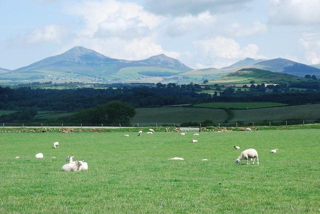 Tir amaethyddol Bodgadle Farmland