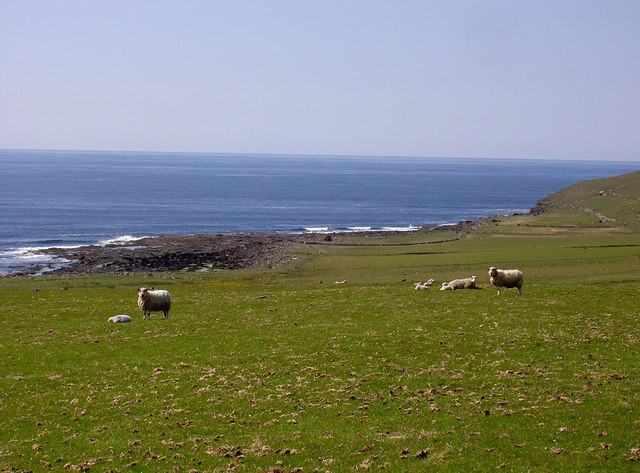 Fields and beach near Kirbest, Westside