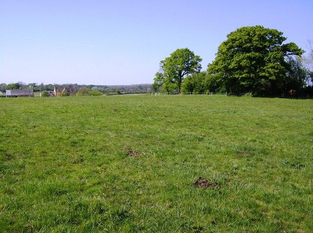 Field near Hebden Farm