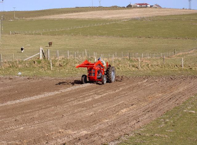 Farmland at 7 Links