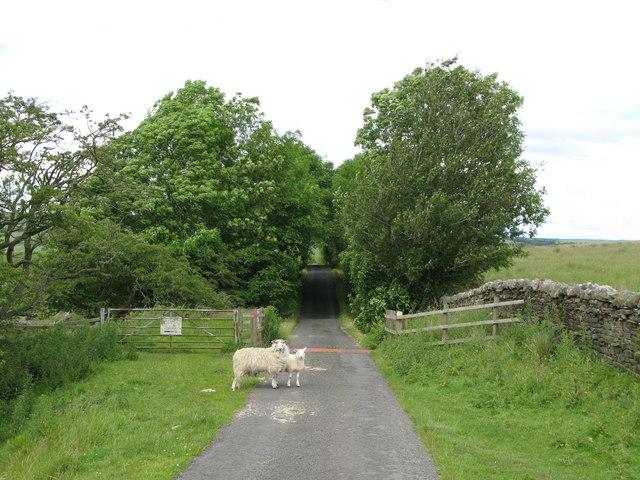 Cattle grid on minor road north of Hetherington