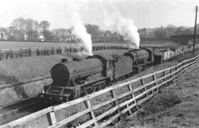 The Stray railway cutting, Harrogate, 1954