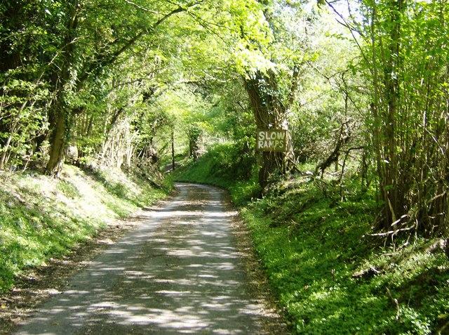 Lane to Nettleton Mill