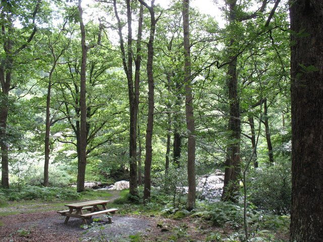 A picnic site on the banks of Afon Mawddach