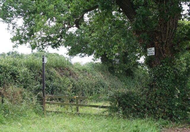 Towards Burtons Wood