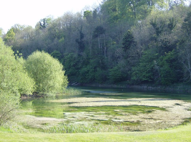 Pond on the golf course
