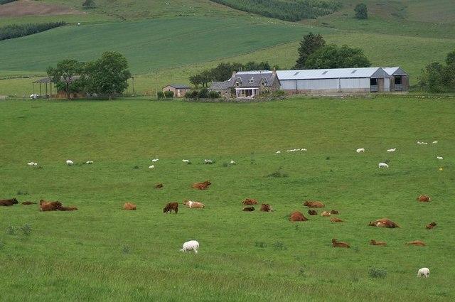 The farm at Shealwalls