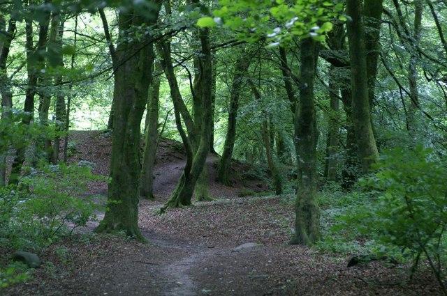 Den of Alyth