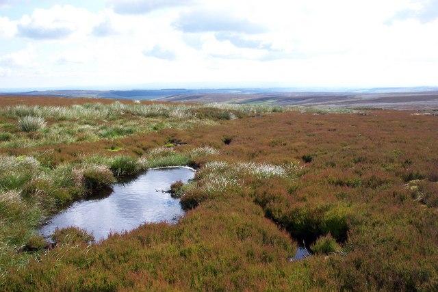 Pool on Masham Moor