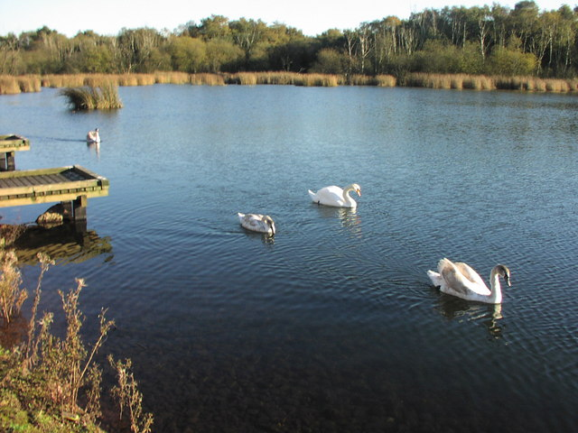 The Raz (Reservoir), Cheslyn Hay