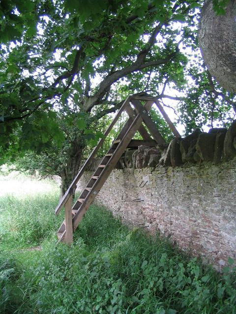 Ladder stile, Loton Park