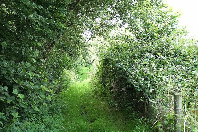 Atherington: footpath to the village