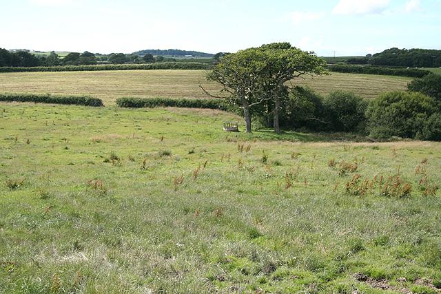 Yarnscombe: near Sherwood Green