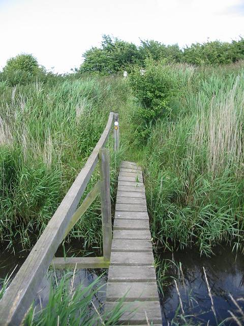The bridge over Whitfield Sewer