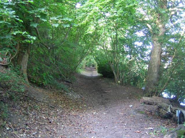 Bisham: Quarry Wood Restricted Byway