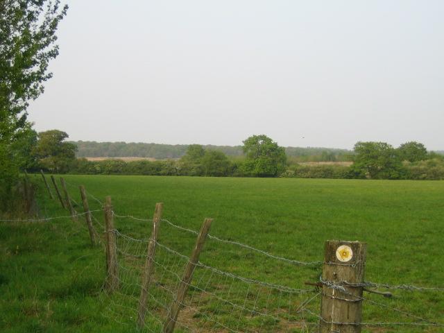 Farmland near Prune Farm, Edgcott