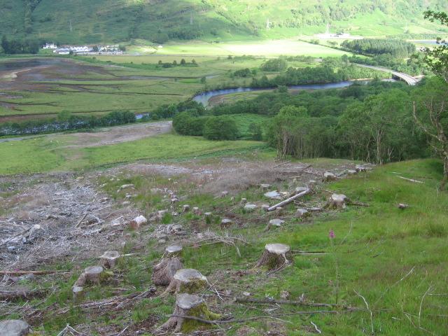 Hillside above Inverfyne