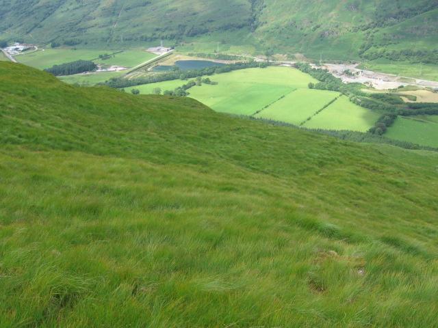 Hillside above Glen Fyne
