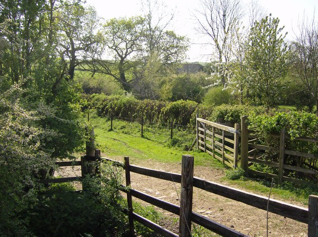 Track between Vicarage Farm and Lower Glassthorpe