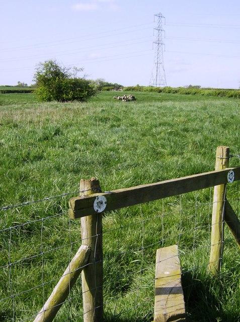 Macmillan Way across farmland