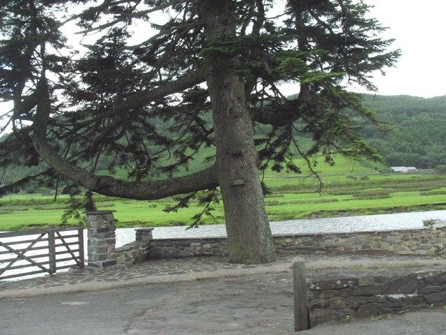 The tidal Afon Dwyryd