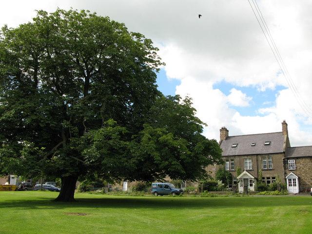 Wark village green (2)
