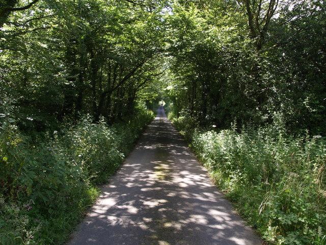 Lane to Priestacott