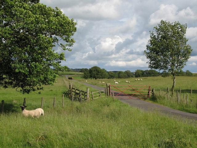 Gated road near Woodpark Farm