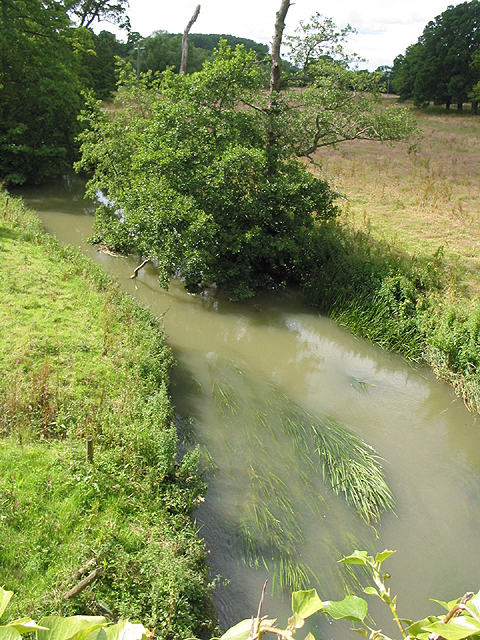 River Evenlode looking upstream from the bridge