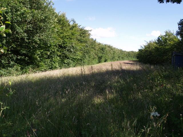 Former railway track