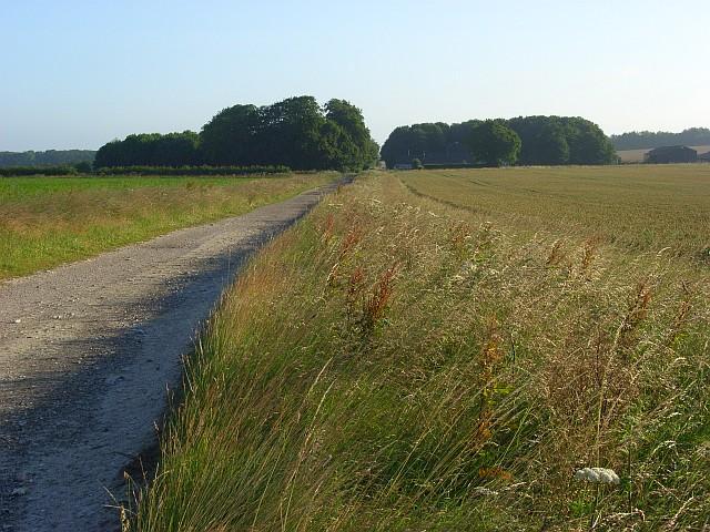 Farm track, Druid's Head Farm
