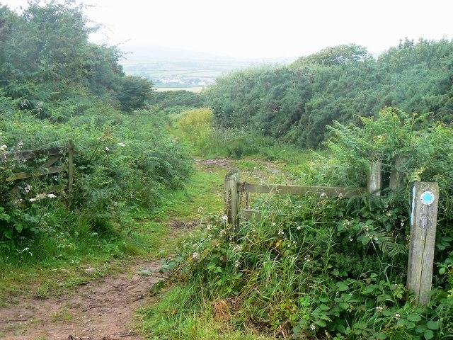 Bridleway to Scurlage