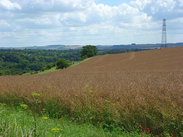 Farmland and pylon, Woodford