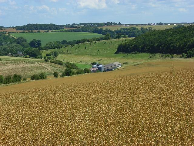 Farmland, Woodford