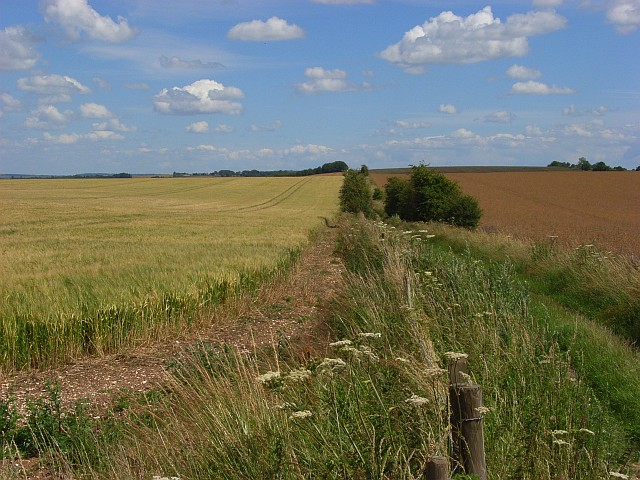 Farmland, Woodford