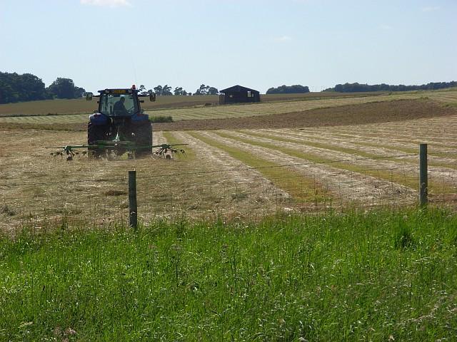 Making hay on Wilsford Down