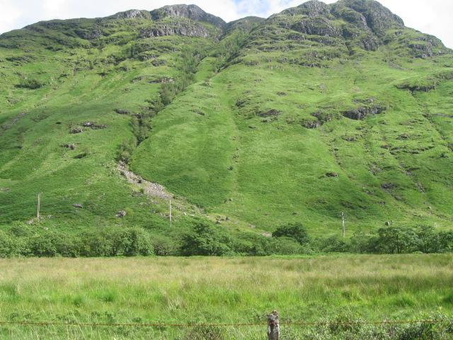 Cruach Tuirc hillside from Glen Fyne