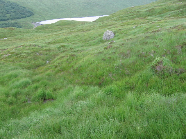 Hillside above Allt na Lairige reservoir