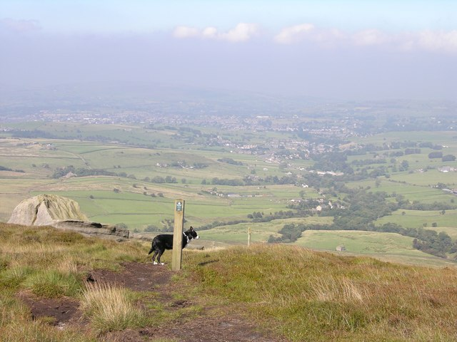 Looking North from Abbot Stone on Boulsworth Hill