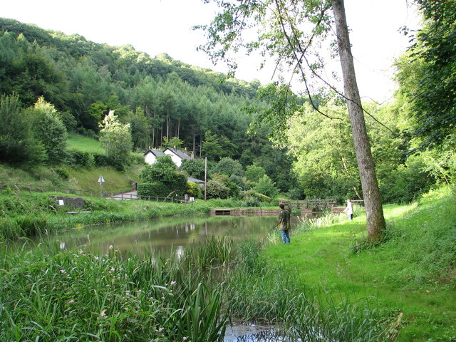 Fishing pond on the Angidy above Tintern